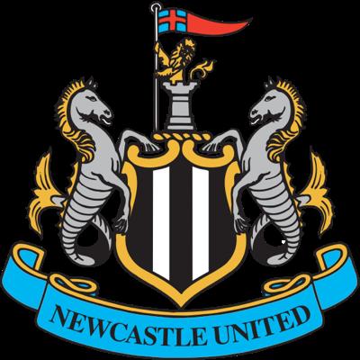 Ньюкасл - logo