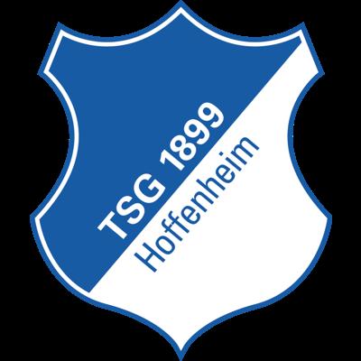 هوفنهايم - logo
